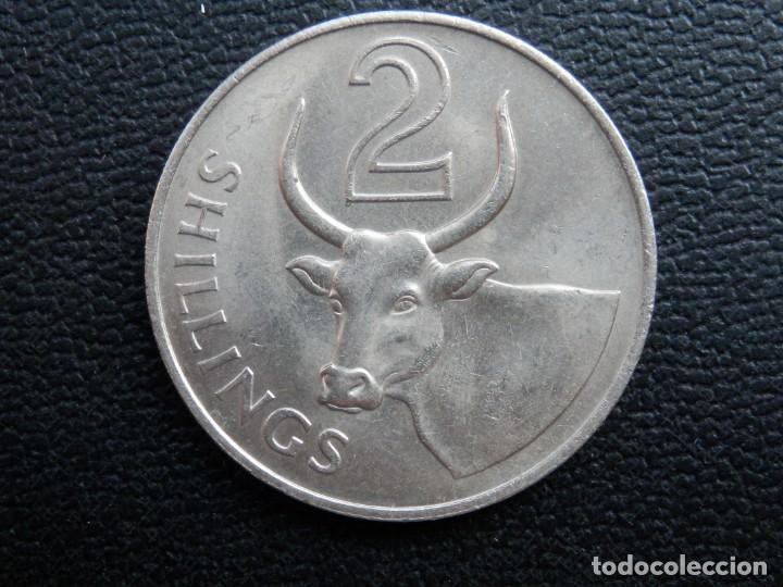 GAMBIA 2 SHILLINGS AÑO 1966, CONSERVACIÓN = SC. LA MONEDA NO HA CIRCULADO (Numismática - Extranjeras - África)