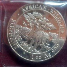 Monete antiche di Africa: SOMALIA * 100 SHILLINGS 2012 * 1 ONZA DE PLATA PURA. Lote 269297858