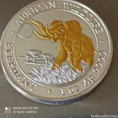 Monedas antiguas de África: PRECIOSA MONEDA DE SOMALIA DE 100 CHILLINGS, SIN CIRCULAR.. Lote 277664313