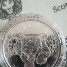 Monedas antiguas de África: MONEDA 5 CEDIS GHANA 2017 AFRICAN LEOPARD 2017 31 GR PLATA 999. Lote 288949288