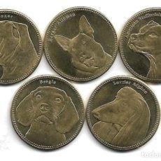 Monedas antiguas de África: SOMALILANDIA,5 CHELINES 2019,PERROS DE RAZA,S/C.. Lote 294479928