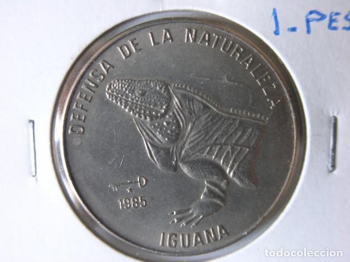 Monedas antiguas de América: MONEDA DE 1 PESO - CUBA - 1985 - IGUANA - SC - Foto 2 - 135172182