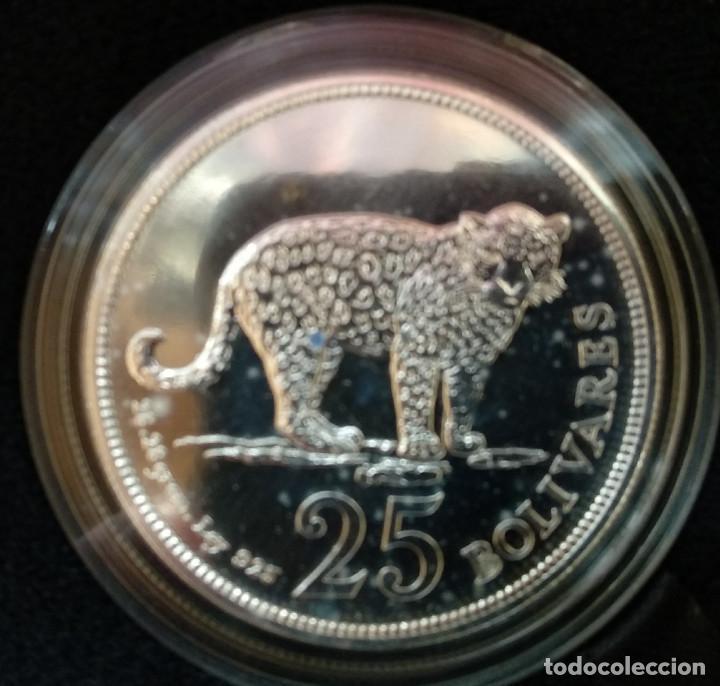 Monedas antiguas de América: VENEZUELA set plata 25 y 50 bolivares 1975 JAGUAR y ARMADILLO - Foto 3 - 146619366