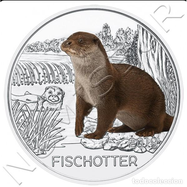 Monedas antiguas de Europa: AUSTRIA 3 euro 2019 NUTRIA - Serie Criaturas FISCHOTTER Lutra Lutra - Foto 2 - 168248232