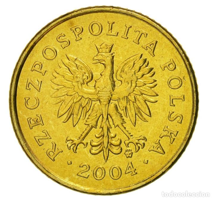 Monedas antiguas de Europa: Polonia 1 grosz 2004 Bolsa con 5 monedas - Foto 2 - 175152554