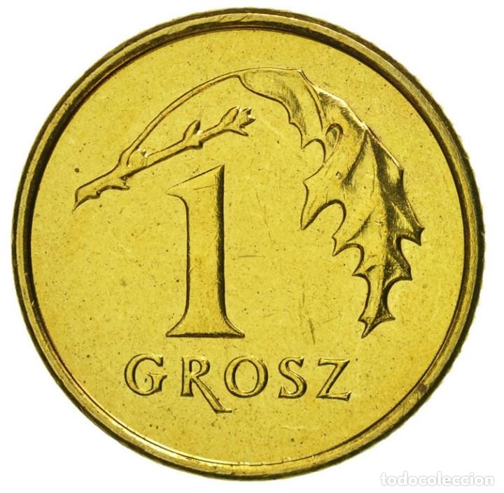 Monedas antiguas de Europa: Polonia 1 grosz 2004 Bolsa con 5 monedas - Foto 3 - 175152554