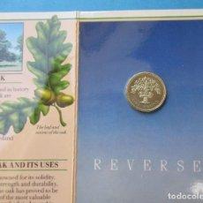 Monedas antiguas de Europa: GRAN BRETAÑA. MONEDA DE 1 LIBRA. SIN CIRCULAR. 1987. ROYAL MINT.. Lote 212530195