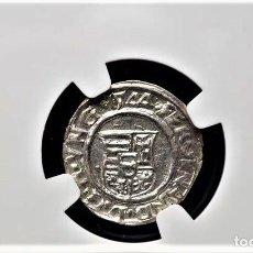 Monedas antiguas de Europa: IMPERIO AUSTRIACO.FERNANDO I. DENARIO. NGC CERTIFICADO UNC DETAIL KREMNITZ(HUNGRIA). 1544-KB-PLATA. Lote 213474067