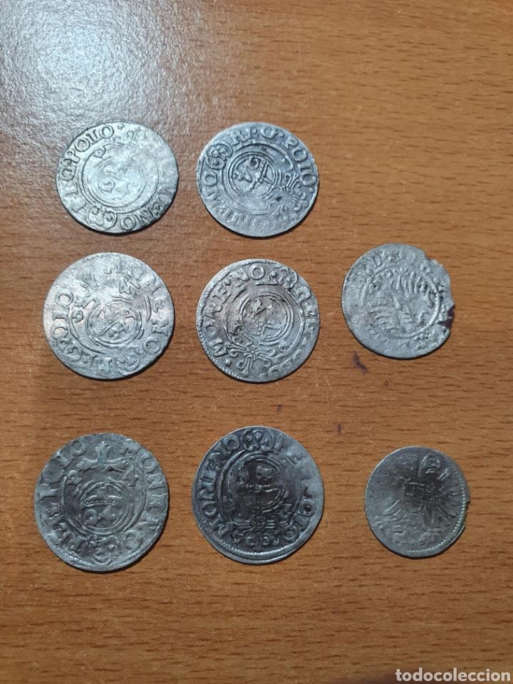 Monedas antiguas de Europa: LOTE DE 8 MONEDAS DE PLATA DE POLONIA, 1/24 THALER DE SEGISMUNDO III REY DE POLONIA Y - Foto 2 - 245909525