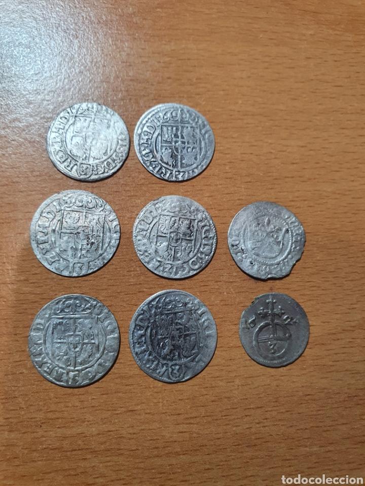 LOTE DE 8 MONEDAS DE PLATA DE POLONIA, 1/24 THALER DE SEGISMUNDO III REY DE POLONIA Y (Numismática - Extranjeras - Europa)