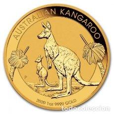 Monedas antiguas de Oceanía: MONEDA ORO 1 ONZA CANGURO AUSTRALIANO 2020. Lote 230460655