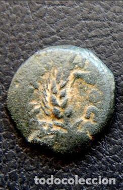 Monedas antiguas: JUDEA Marco Ambibulus - Foto 2 - 151906346