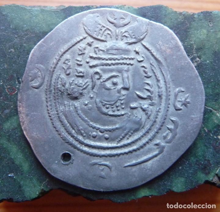ÁRABES / SASÁNIDAS. MONEDA (Numismática - Periodo Antiguo - Otras)
