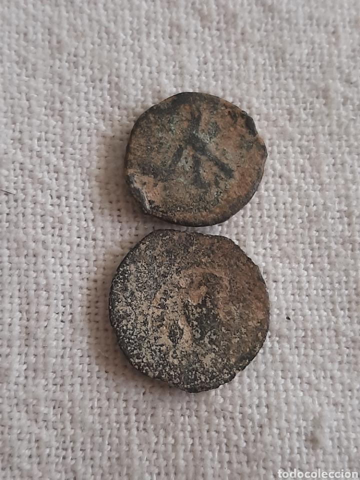 Monedas antiguas: (REINO PTOLEMAICO) LOTE DE MONEDAS - Foto 2 - 255391415