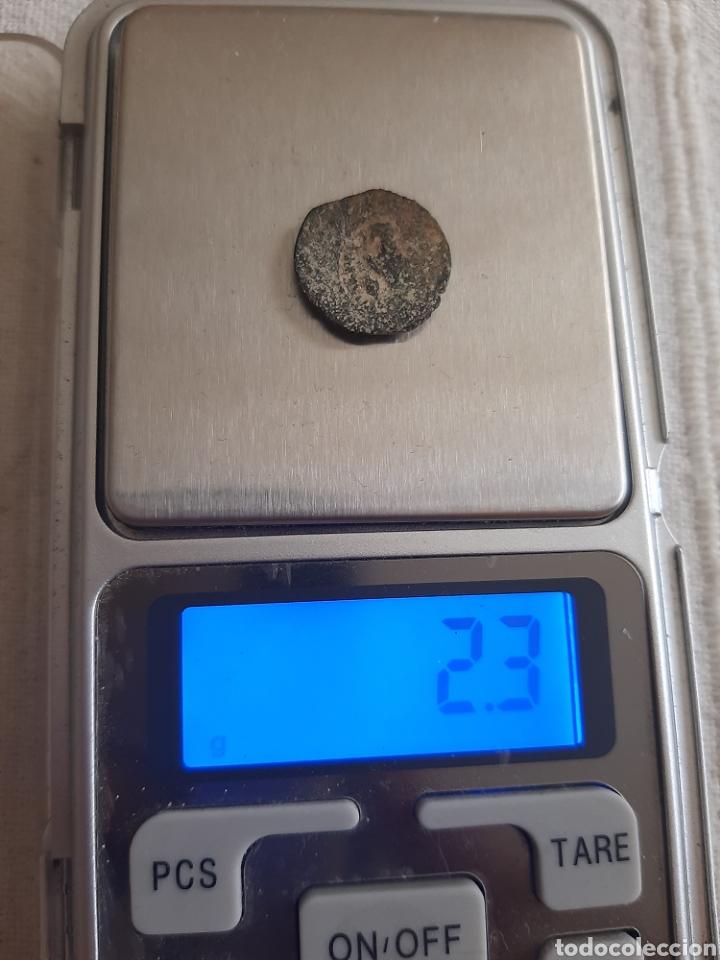 Monedas antiguas: (REINO PTOLEMAICO) LOTE DE MONEDAS - Foto 7 - 255391415