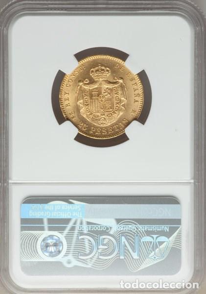 Monedas de España: SPAIN - ALFONSO XII - 25 PESETAS DE ORO - AÑO 1881 MSM - GARANTIA NGC - SIN CIRCULAR - - Foto 2 - 142888502