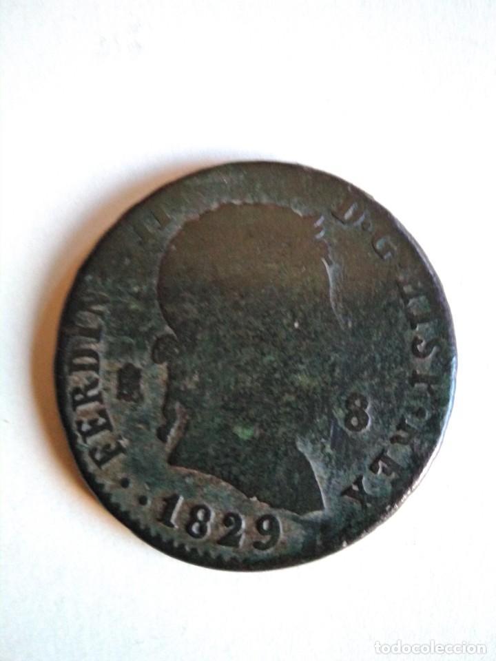 MONEDA DE 8 MARAVEDÍS, FERNANDO VII 1829, SEGOVIA (Numismática - España Modernas y Contemporáneas - De Reyes Católicos (1.474) a Fernando VII (1.833))