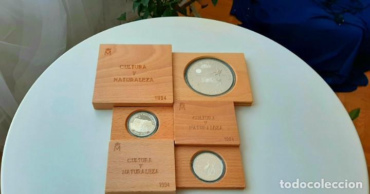 Monedas FNMT: Cultura y Naturaleza. Cincuentín (1) y 8 reales (2). 1994 - Foto 5 - 229064365