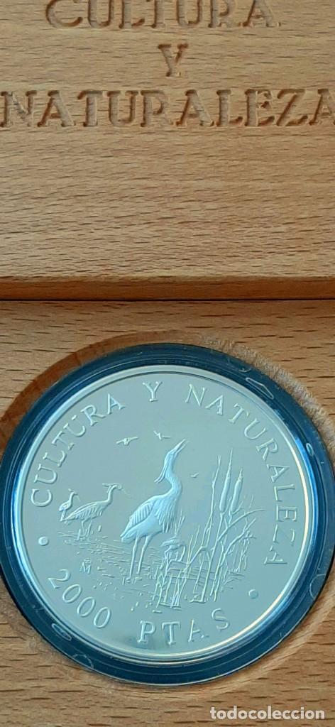 Monedas FNMT: Cultura y Naturaleza. Cincuentín (1) y 8 reales (2). 1994 - Foto 10 - 229064365