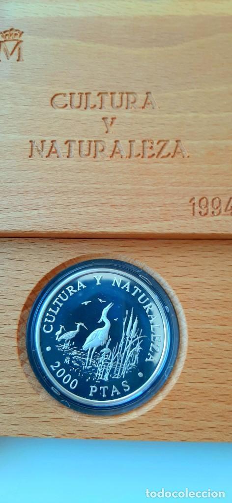 Monedas FNMT: Cultura y Naturaleza. Cincuentín (1) y 8 reales (2). 1994 - Foto 11 - 229064365