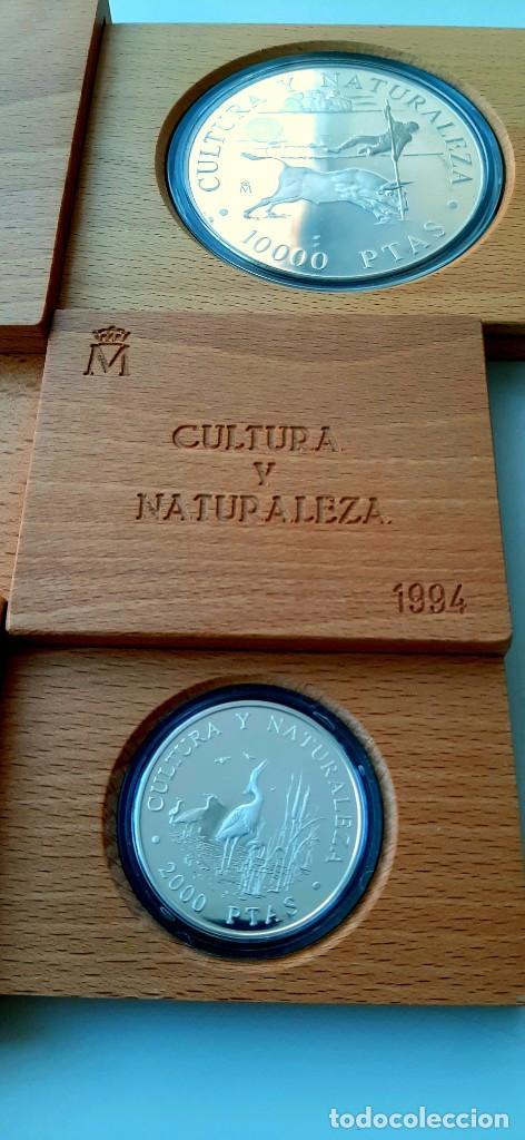 Monedas FNMT: Cultura y Naturaleza. Cincuentín (1) y 8 reales (2). 1994 - Foto 12 - 229064365