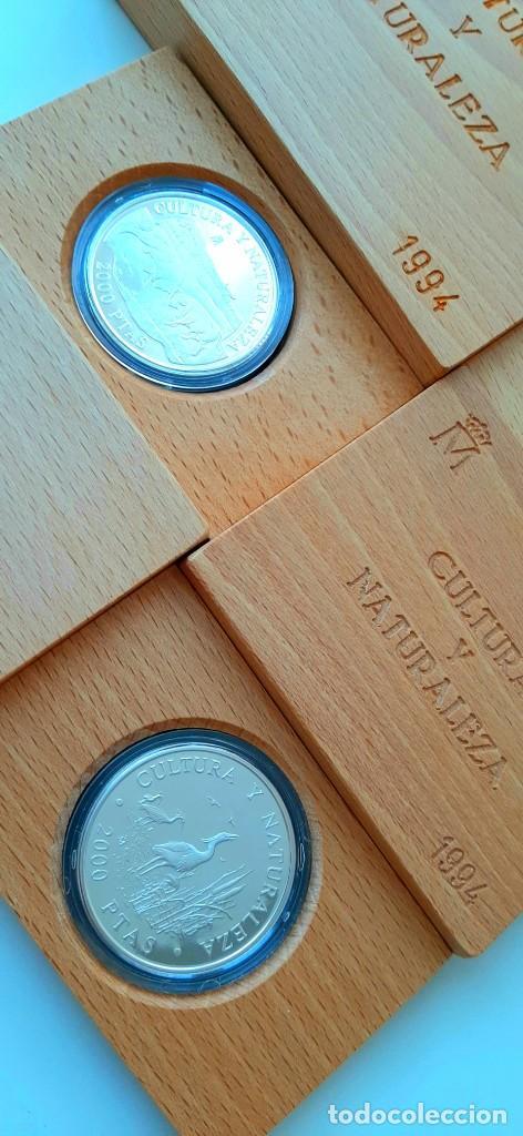 Monedas FNMT: Cultura y Naturaleza. Cincuentín (1) y 8 reales (2). 1994 - Foto 14 - 229064365