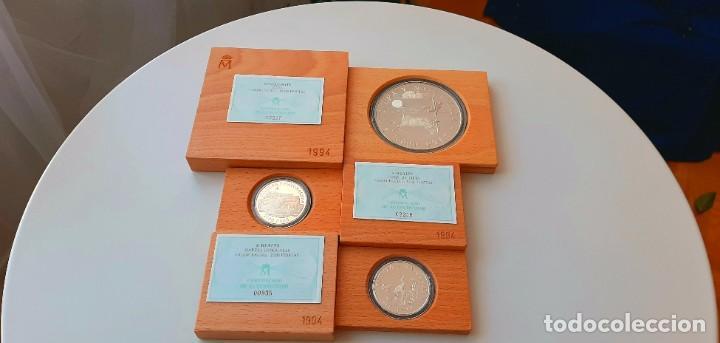 Monedas FNMT: Cultura y Naturaleza. Cincuentín (1) y 8 reales (2). 1994 - Foto 16 - 229064365