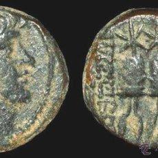 Monedas Grecia Antigua: INTERESANTE Y BONITO BRONCE DEL REY SELEUCIDA ANTIOCO X--CECA ANTIOQUÍA--94-83 A.C.-EXCELENTE . Lote 43848907