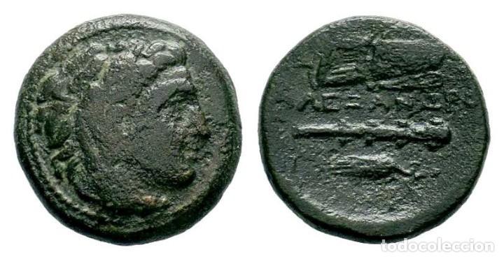 MACEDONIA. ALEJANDRO III EL GRANDE 336-323 A.C. AE. MBC+ 5,01 GR 18,35 MM (Numismática - Periodo Antiguo - Grecia Antigua)