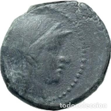 Monedas Grecia Antigua: REINO SELEUCIDA. SELEUCO II. 246-226 ac - Foto 2 - 191966832