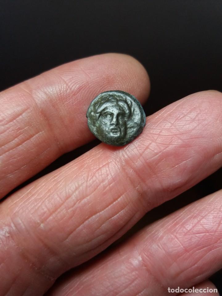CHIRRAPA GRIEGA (Numismática - Periodo Antiguo - Grecia Antigua)