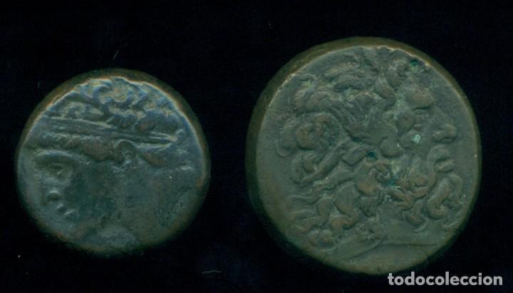 GRECIA -LOTE MONEDAS DE BRONCE - PTOLOMEO III 246 / 222 A. C. + HIERON II 270 / 215 A.C. ORIGINALES (Numismática - Periodo Antiguo - Grecia Antigua)