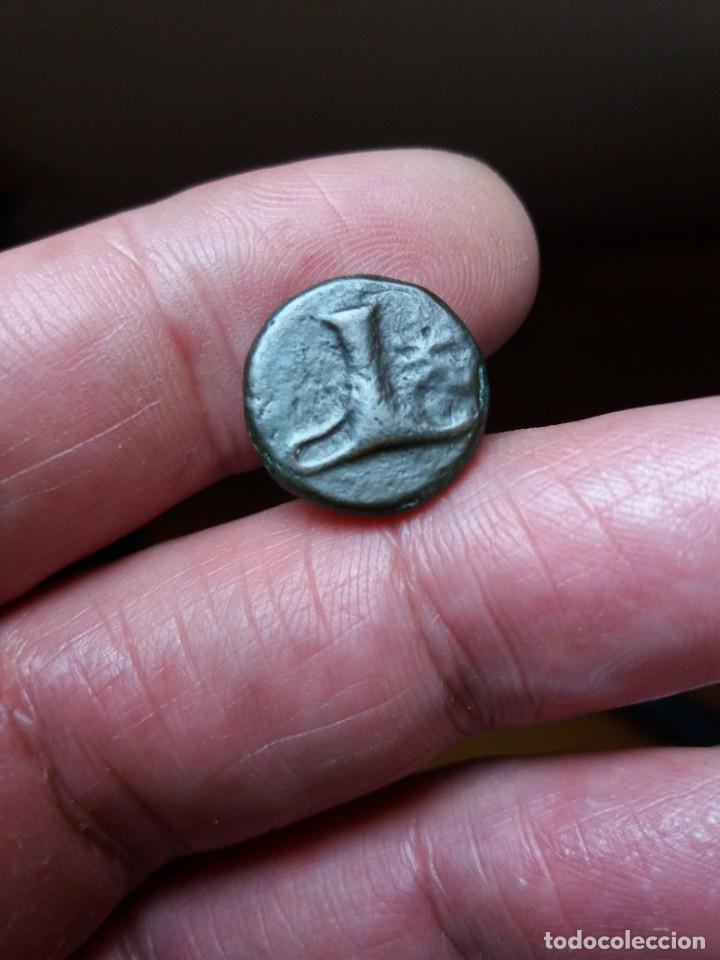 Monedas Grecia Antigua: chirrapa - Foto 2 - 210842052