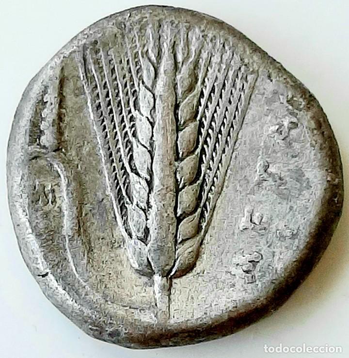 Monedas Grecia Antigua: Estátera-Stater Metapontium circa 340-330 - Foto 6 - 214467456