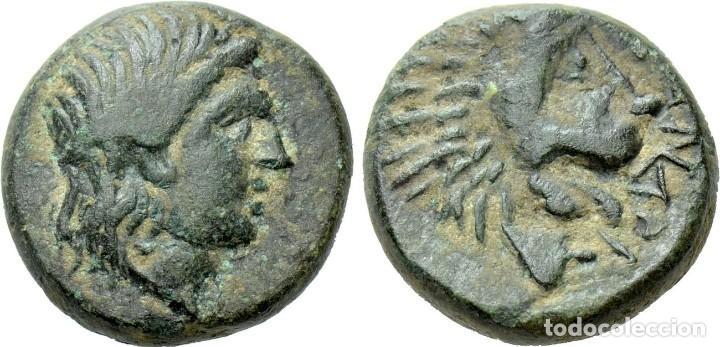 TROAS. ANTANDROS. AE (SIGLOS IV-III A. C.). EBC. CABEZA LAUREADA DE APOLO A LA DERECHA. / LEÓN (Numismática - Periodo Antiguo - Grecia Antigua)