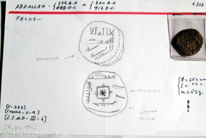 ABDALLAH-FELUS (Numismática - Hispania Antigua - Hispano Árabes)