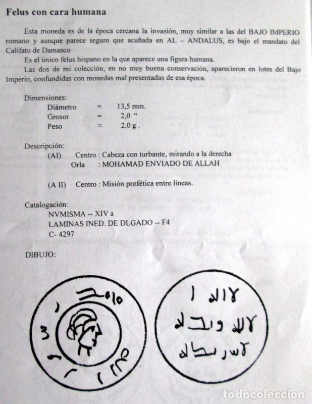 FELUS CON CARA HUMANA 2 VARIANTES (Numismática - Hispania Antigua - Hispano Árabes)