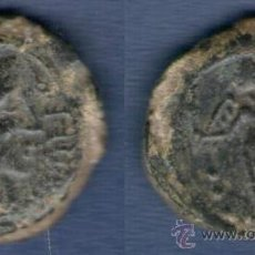 Monedas ibéricas: A.B.1984 SEMIS COLONIA PATRICIA (CORDOBA) MBC+ AE. Lote 33511863