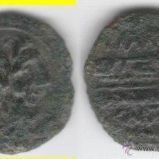 Monedas ibéricas: IBERICO: SEMIS CARTEIA AB-622. Lote 43573120