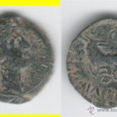 Monedas ibéricas: IBERICO: SEMIS CARTEIA AB-670. Lote 44417273