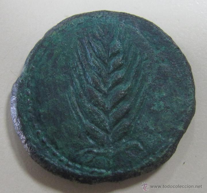 AS ILIPENSE. VER FOTOS (Numismática - Hispania Antigua - Moneda Ibérica no Romanas)