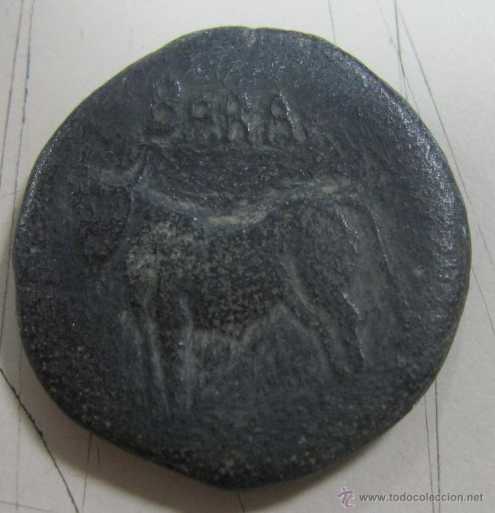 Monedas ibéricas: BORA DUPONDIO. VER FOTOS. 25.43 GRAMOS - Foto 2 - 55068135