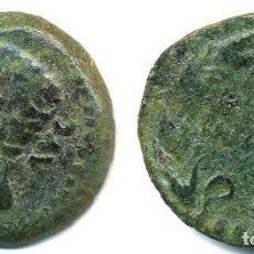 Monedas ibéricas: AUGUSTO, AS ACUÑADO EN COLONIA PATRICIA. Lote 105736255