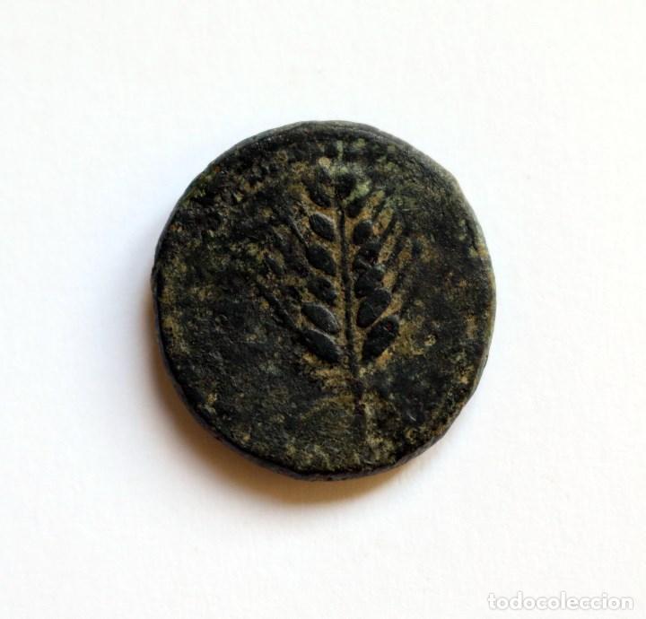 Monedas ibéricas: RARISIMO CUADRANTE ILIPENSE ALCALA DEL RIO (SEVILLA) 120-20 A.C. - Foto 2 - 133575098