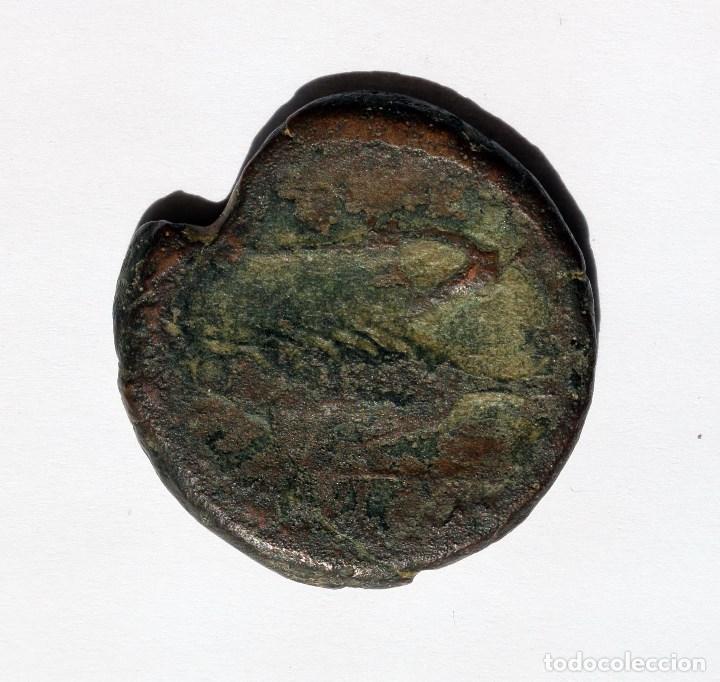 Monedas ibéricas: ESCASA DOBLE UNIDAD OBULCO / IPOLKA PORCUNA (JAEN) S. III A.C. - Foto 2 - 133724878