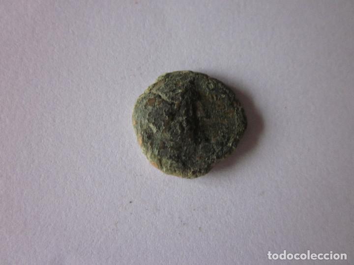 SEMIS DE CORDUBA. (Numismática - Hispania Antigua - Moneda Ibérica no Romanas)