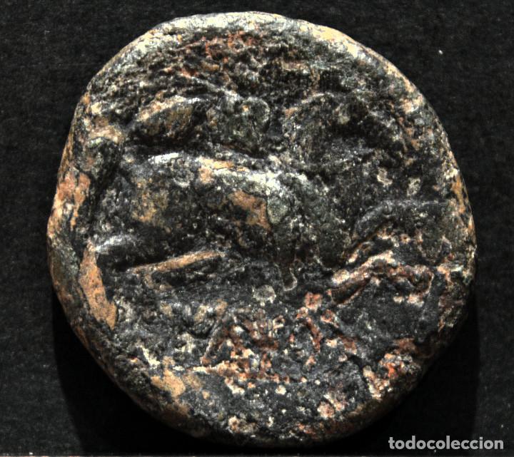 AS DE ILTIRTA LERIDA LLEIDA (Numismática - Hispania Antigua - Moneda Ibérica no Romanas)