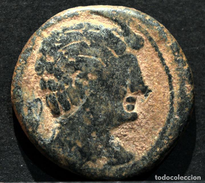 Monedas ibéricas: AS KESE O CESE TARRAGONA SIMBOLO ANFORA - Foto 2 - 172244253