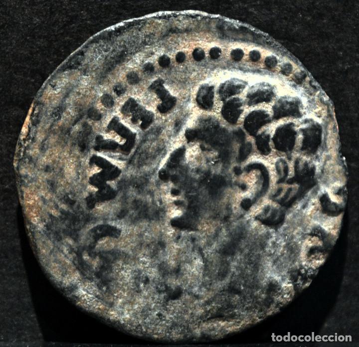 SEMIS COLONIA PATRICIA CÓRDOBA (Numismática - Hispania Antigua - Moneda Ibérica no Romanas)