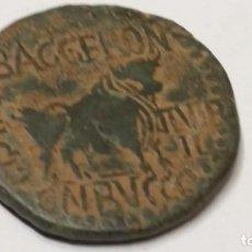 Monedas ibéricas: AS DE AUGUSTO - KELSE 11,56 GR.29 MM 20-50 A.C.VELILLA DEL EBRO (ZARAGOZA). (ABH-819). (ACIP-3170. Lote 210077868